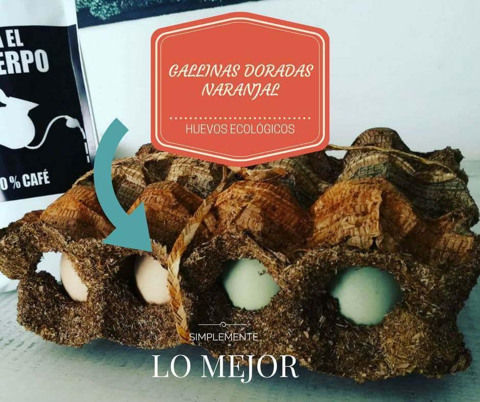 Empaque elaborado en Guasca de plátano, elaborado por madres cabeza de familia.