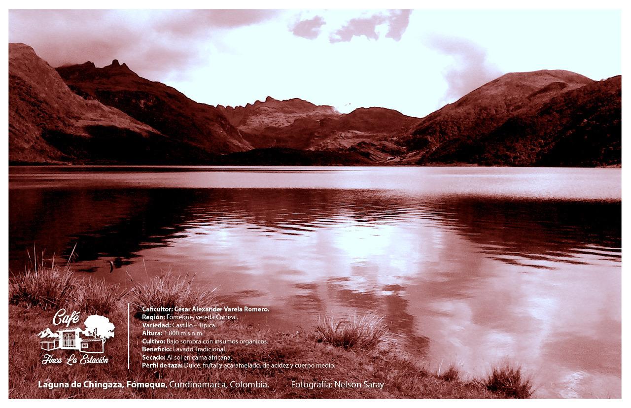 La represa de Chingaza, o embalse de Chuza, está ubicado en el Parque Nacional Natural Chingaza, en el municipio de Fómeque, Cundinamarca, en la misma vertiente de la Laguna de Chingaza, provee de agua potable a un 80% de la población de Bogotá D.C.