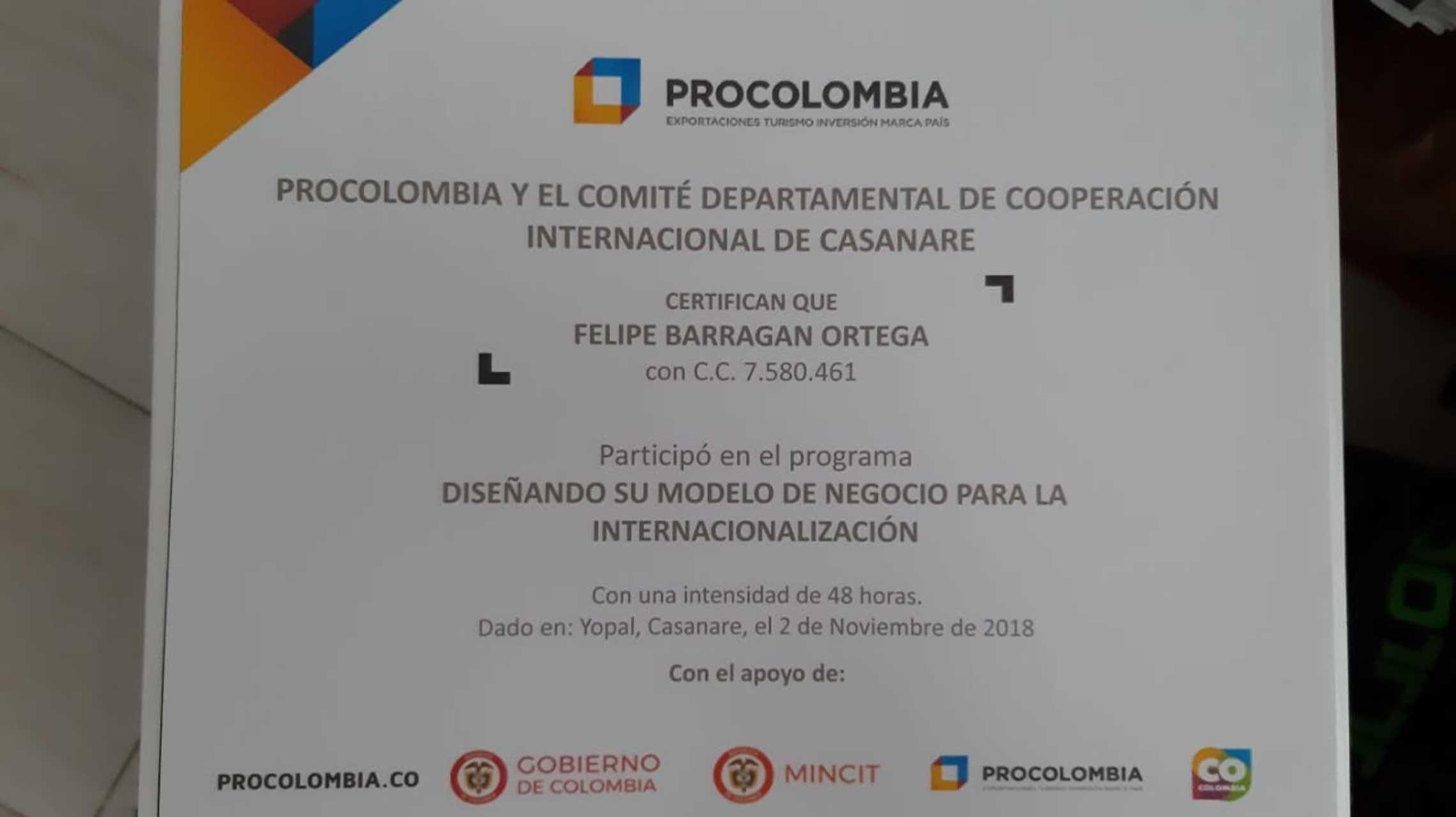 Diseñando su Modelo de Negocio para la Internacionalización Emprendimiento Artesanal NakaoChocolate.