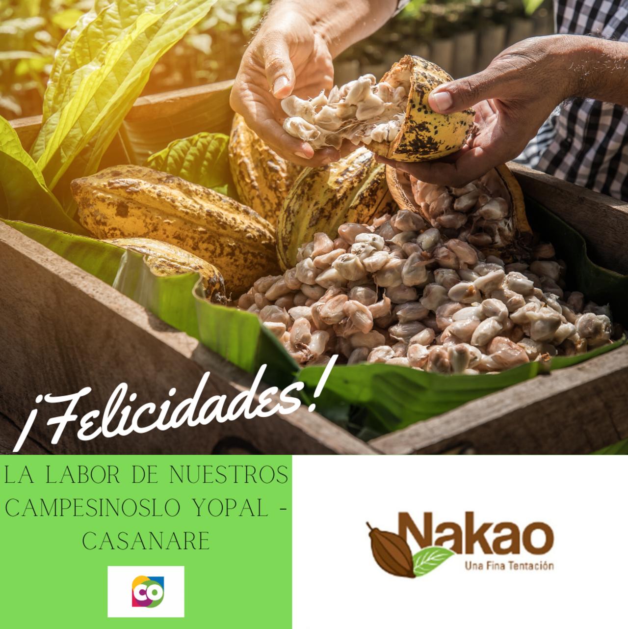 Día del Cacaotero y Cacaotera un labor de reconocimiento Felicidades Nakao Chocolate Artesanal.