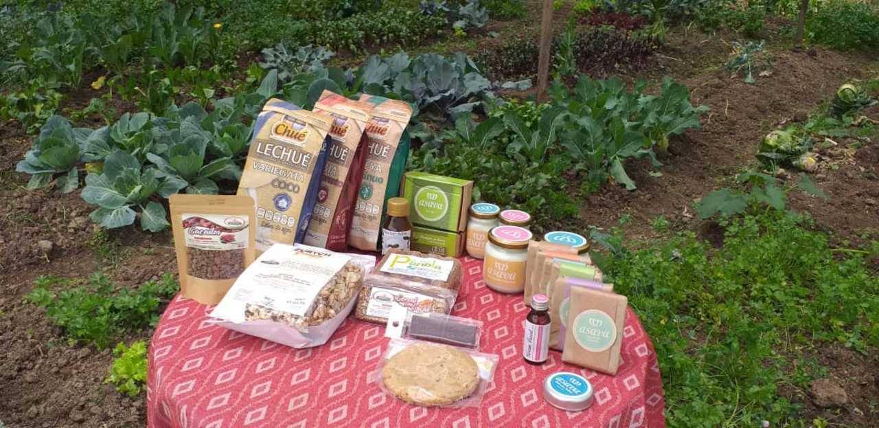 Productos procesados Granja Agroecológica Cielo Verde